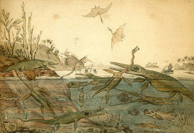 Duria Antiquior famous watercolor by the geologist Henry de la Beche depicting life in ancient Dorset based on fossils found by Mary Anning.