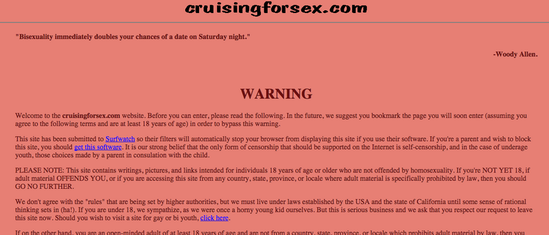 The cruising for sex website disclaimer.
