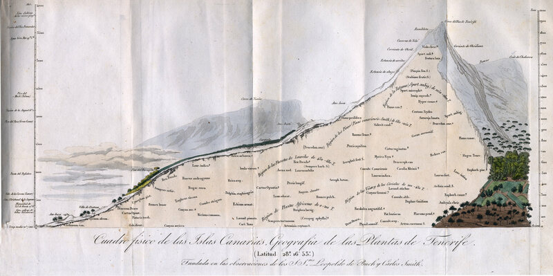 An early map of Humboldt's, illustrating the various phenomena that make up Teneriffe, one of the Canary Islands.