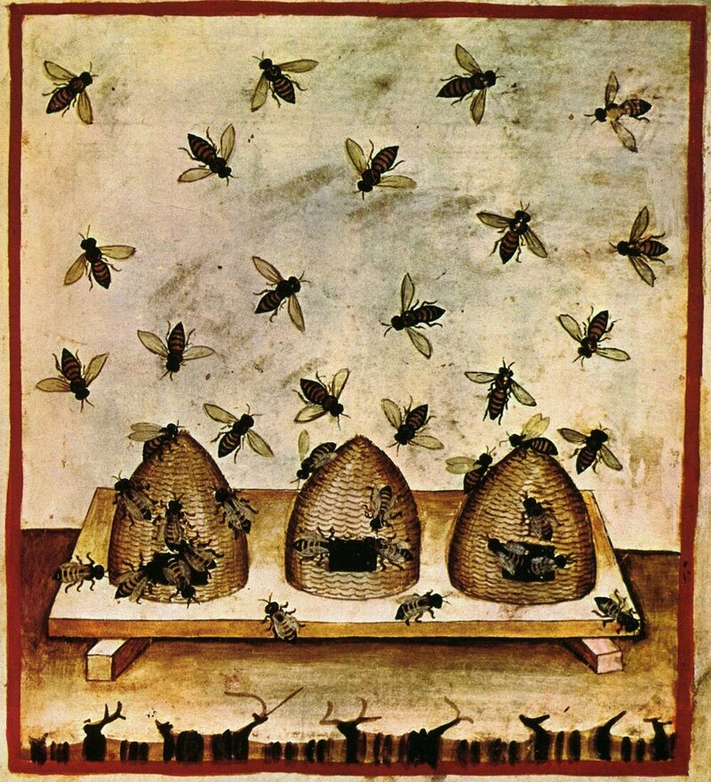 A 14th century depiction of beekeeping.