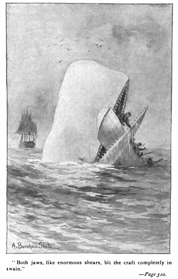 """Moby-Dick, a definite """"he."""""""