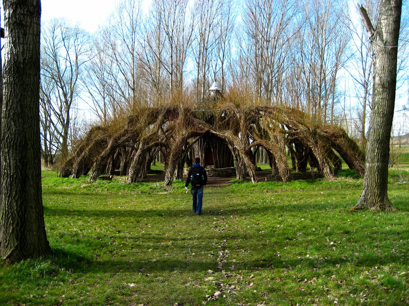 8 Extraordinary Pieces Of Architecture Grown From Living