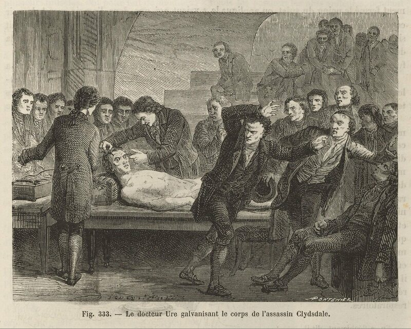 In this 1867 illustration, a crowd of scientists watch in horror as Andrew Ure makes the lifeless body of Matthew Clydesdale tremble and twitch with electricity.