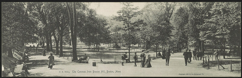 The Common from Beacon Hill, Boston, c. 1905.