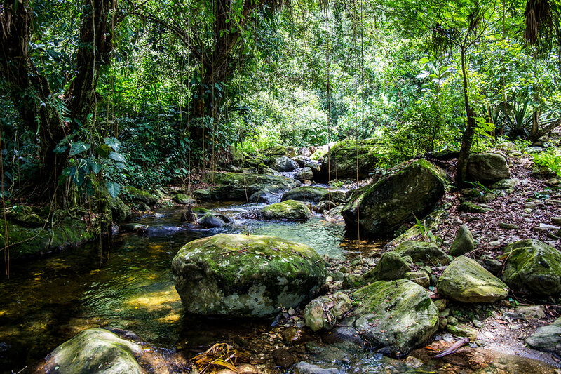 The trail leading to the Lost City is full of rivers that carry water from the snow-topped Sierra Nevada de Santa Marta to the Caribbean sea.