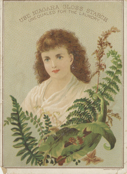 A Victorian-era advertisement for fabric starch, decorated with ferns.