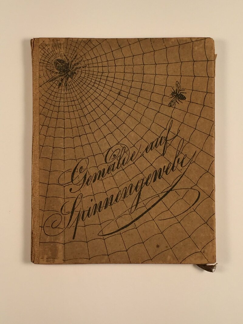 The dark cover of the case containing the four cobweb paintings in the Northwestern University special collections library.