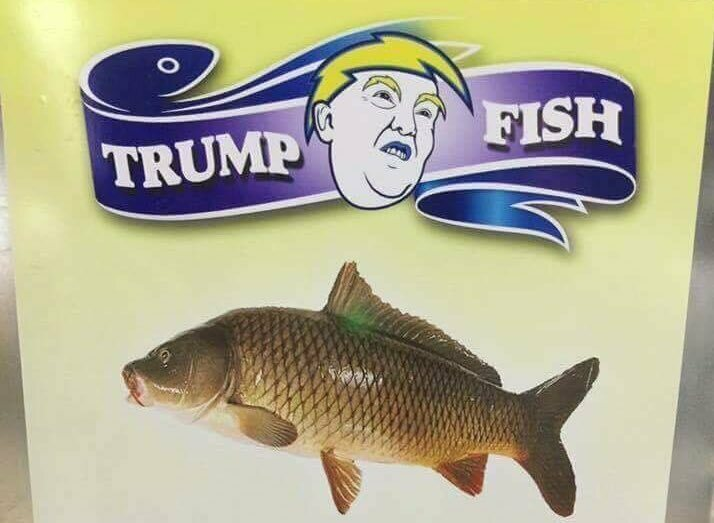 Image result for Trump fish