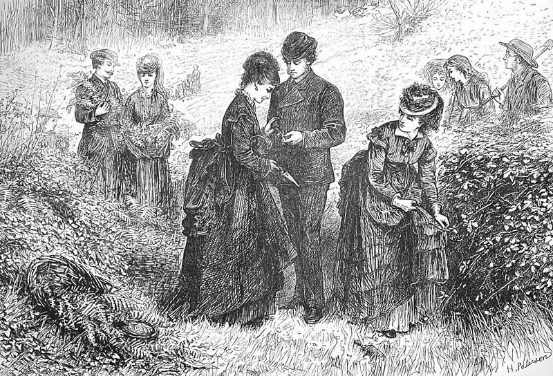 An 1871 illustration of a party gathering ferns.