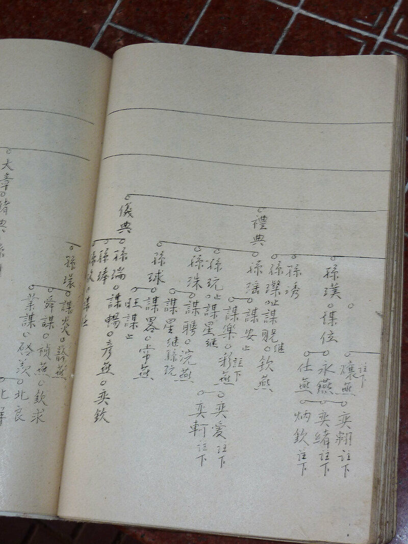 The Chan family genealogy--Lim's maternal relatives.