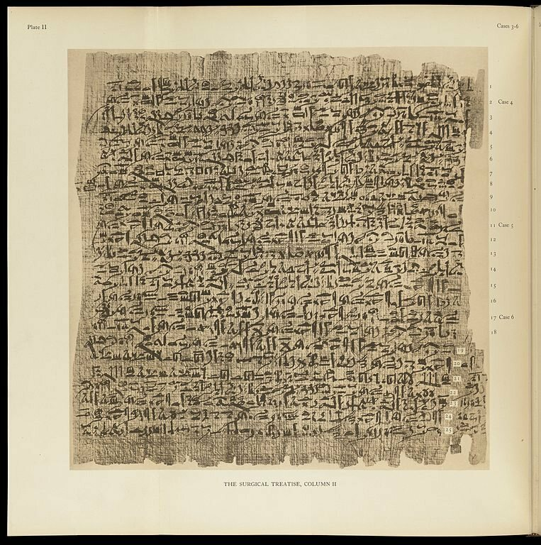 A page from the Edwin Smith papyrus.