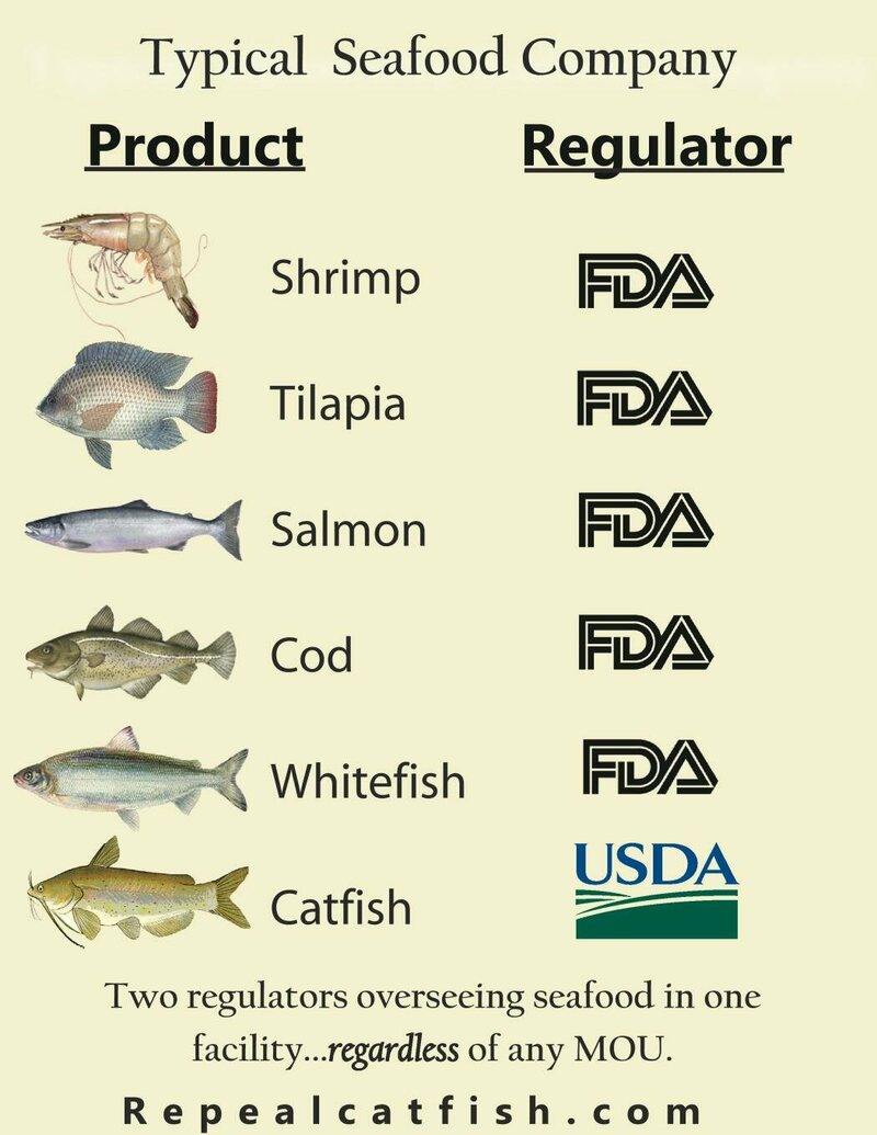 One of repealcatfish.com's many infographics.