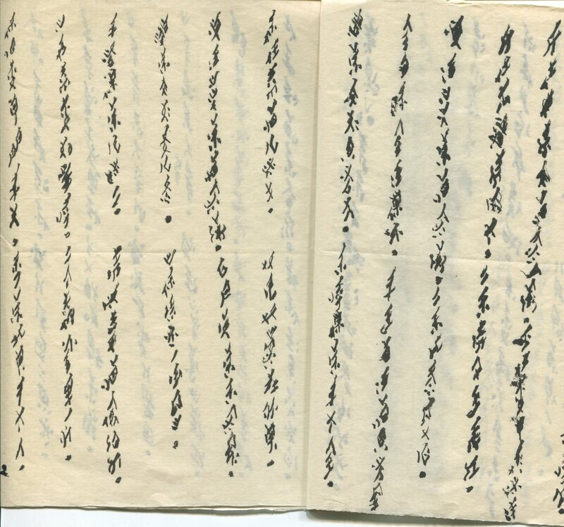 A sample of Yi Nianhua's Nüshu writing. The fat lines made the characters almost illegible for Silber.