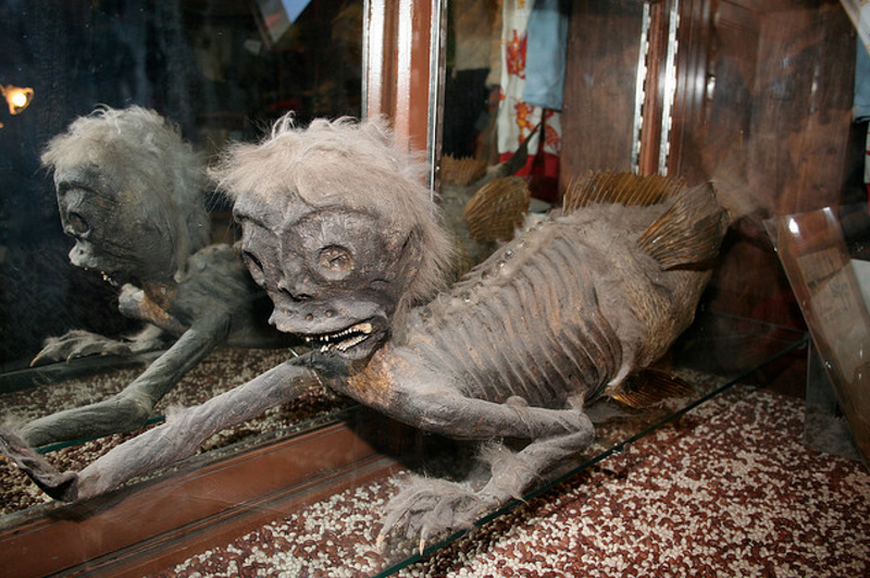 The Banff mermaid, one of the most famous Feejee mermaids.