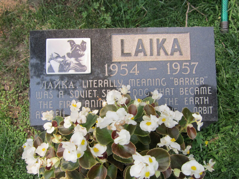 Memorial to the Soviet space dog Laika.