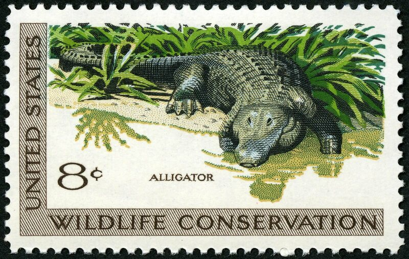 One of the first jumbo-sized stamps, part of 1971's wildlife-themed collection.