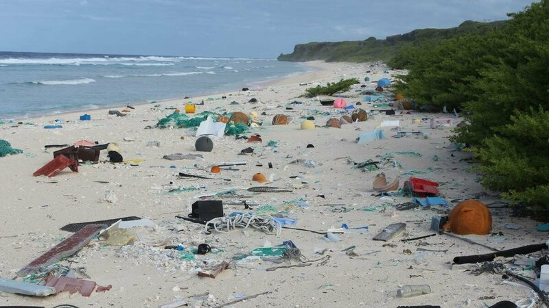 Plastic trash on Henderson Island.