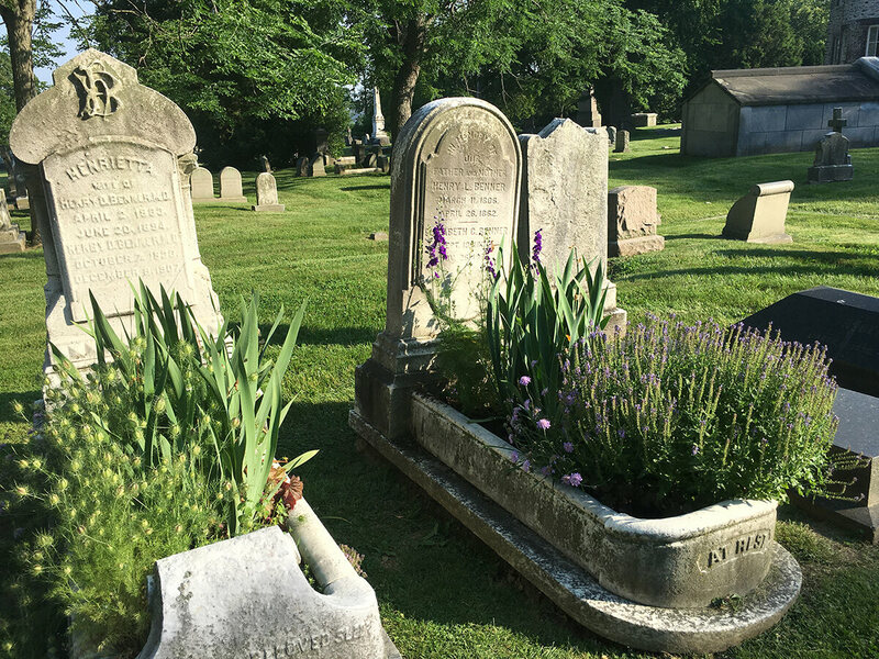 Plants grow in graves at Woodlands Cemetery, Philadelphia.