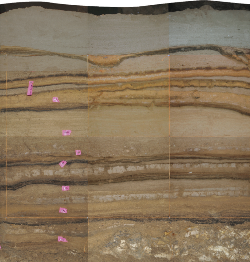 Layers of silt record a series of tsunamis in Indonesia. Light layers were deposited by waves, while dark layers are organic material.