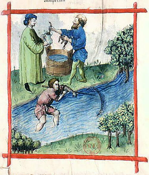 Fishing for lamprey, from the <em>Tacuinum Sanitatis</em>, a 15th-century text about health and medicine.
