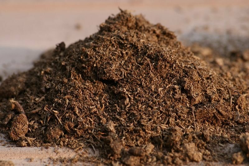 Peat moss, prepared for use as a soil additive.