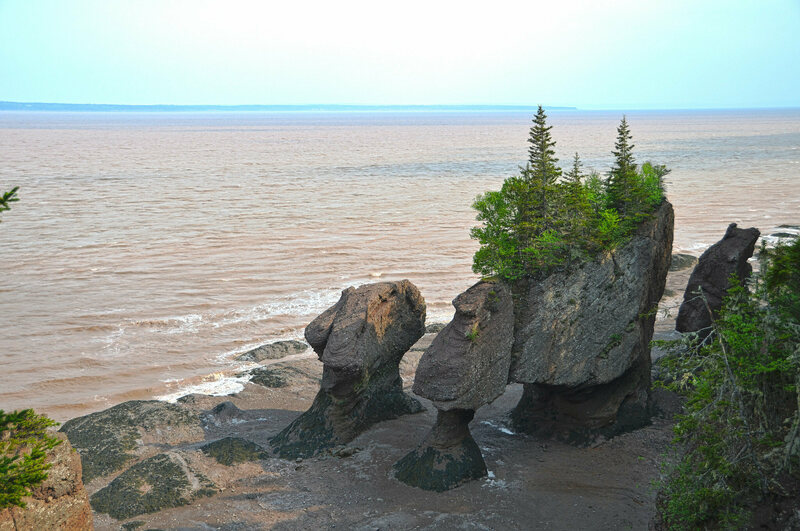 "The ""flower pots"" of Hopewell Rocks."