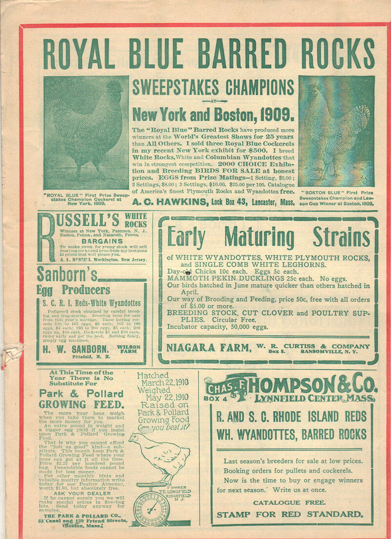 Poultry breeders advertised in specialty magazines to carry their message to other breeders and producers. Poultry show winners were important for bragging rights as well as marketing features.