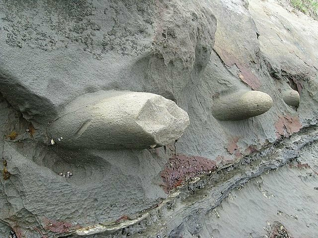 Round concretions in Auckland, New Zealand.