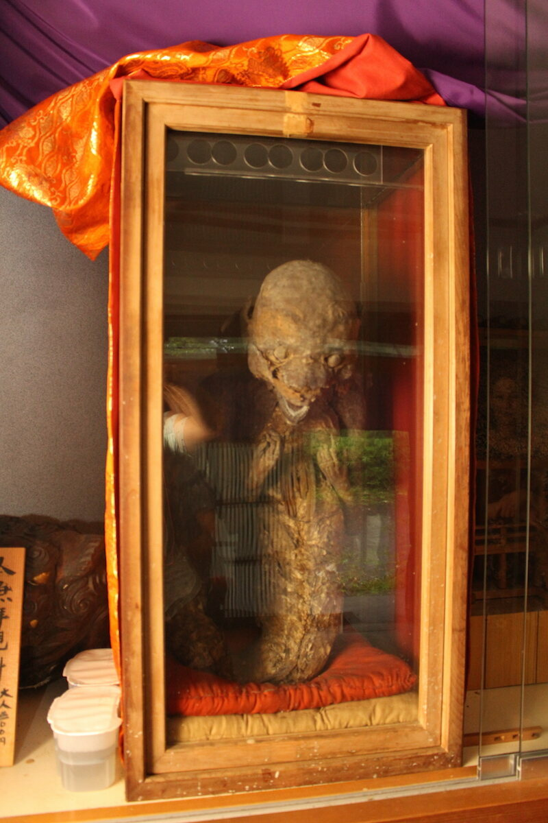 Are mermaids real 5 real cases of mermaid sightings -  Photo Justin Arnold On Atlas Obscura