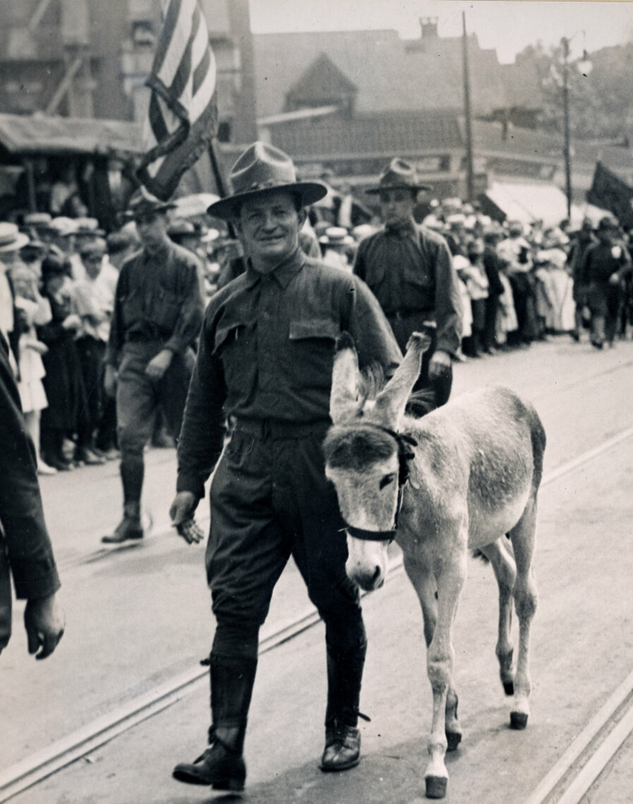 In this 1917 photo, Private M.C. Mullen leads Marshall the mule, the mascot of the Second Field Artillery, NYNG.