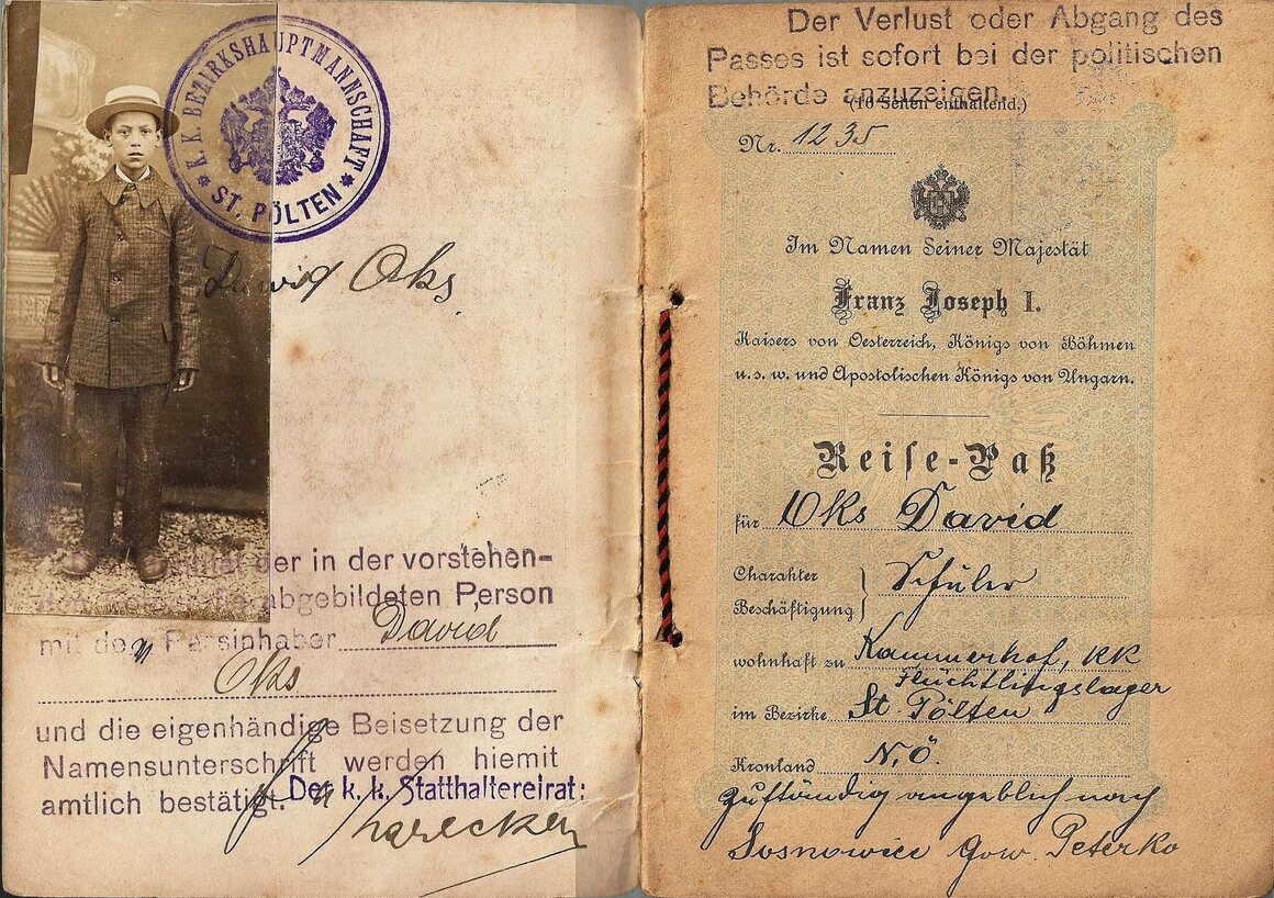 "This 1916 travel document belonged to a young Jewish refugee, shown in a ""portrait-style"" passport photo."