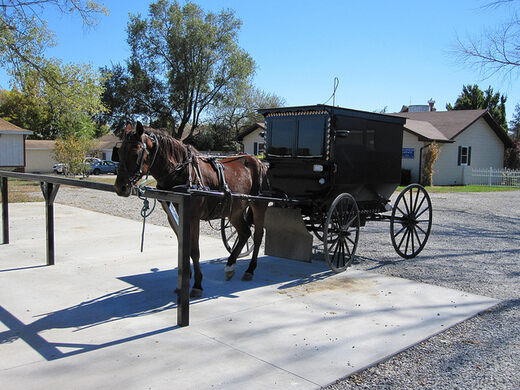 view all photos buggy rides at rockome. beautiful ideas. Home Design Ideas
