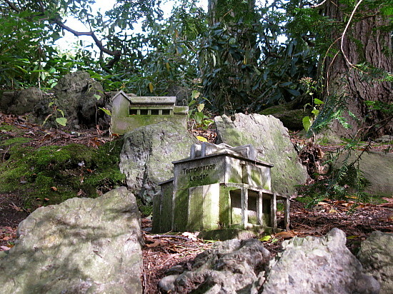 cemetery in the forest - photo #18