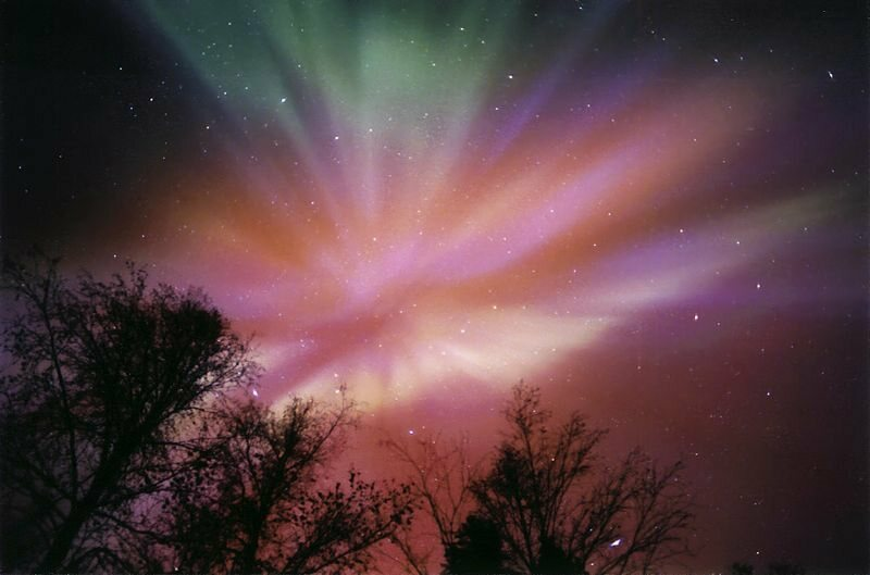 Purple polar aurora seen from Alaska