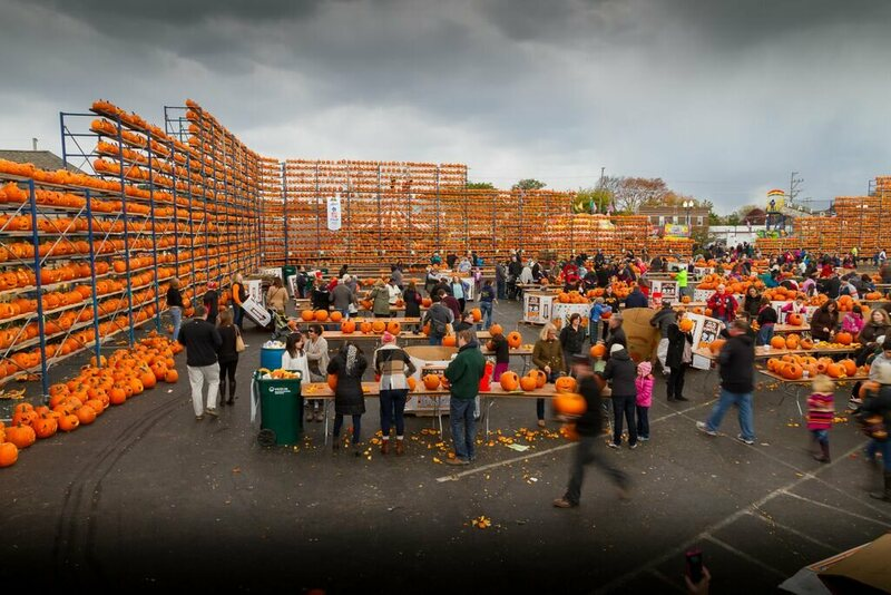 Pumpkin assembly lines at the 6th Annual Great Highwood Pumpkin Festival.