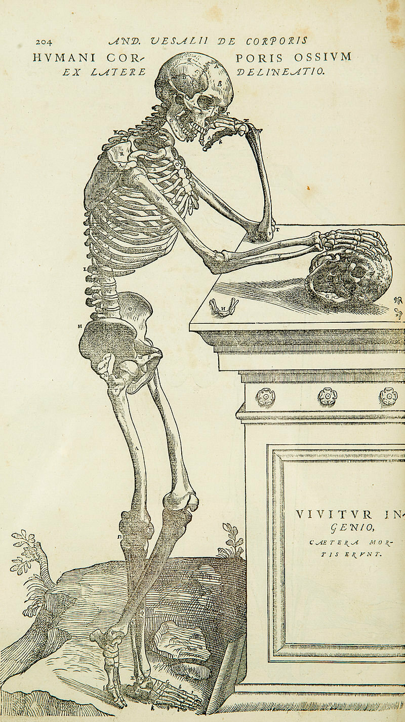 Spooky Scary Skeletons From The Bible To Tumblr Atlas
