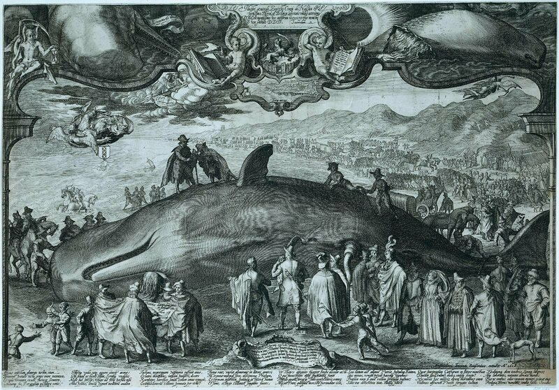 An engraving of a beached whale with allegorical references to natural disaster, death, and the plague by Jan Saenredam, 1602