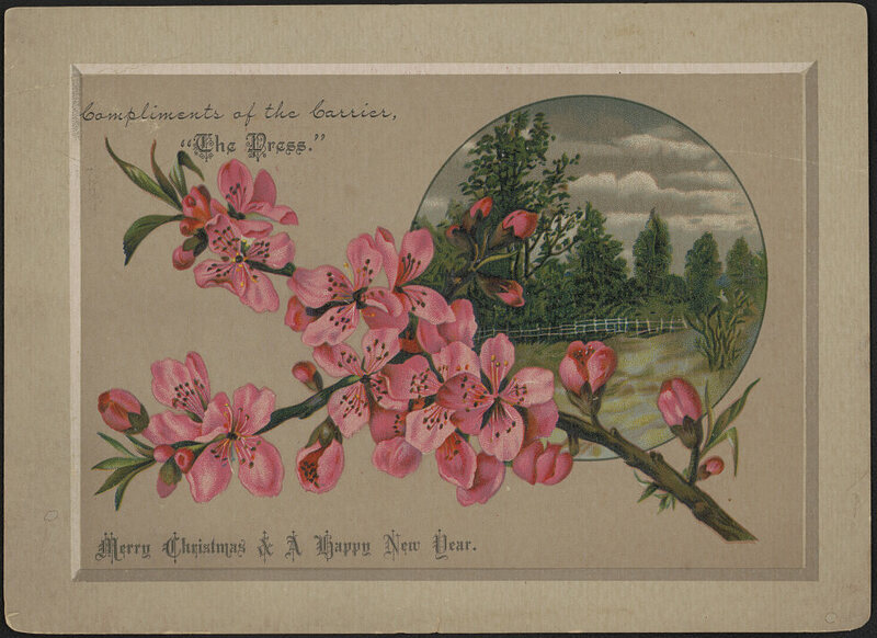 late Victorian holiday card with Christmas and New Year greetings, showing a branch with cherry blossoms