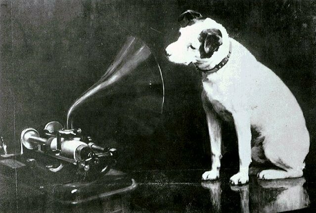 Dog music has gotten way better since they invented subwoofers.