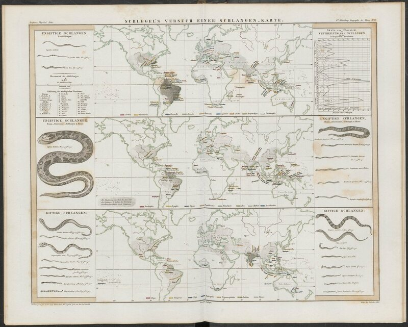 The exquisite 19th century infographics that explained the history a helpful map of worldwide snake distribution also from the physikalischer atlas gumiabroncs Choice Image