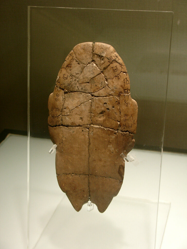 Shang Dynasty Ceremonial Turtle Bone