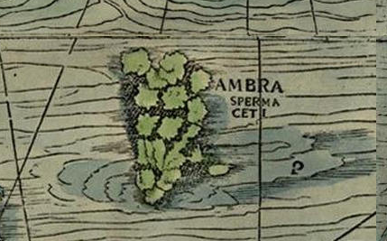 Can You Spot all the Sea Monsters in this 16th-Century Map? - Atlas ...