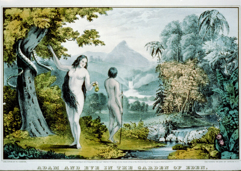 How rival gardens of eden in iraq survived isis dwindling tourists a mid 19th century lithograph of the lushly landscaped garden of eden photo library of congress lc uszc2 1915 publicscrutiny Image collections