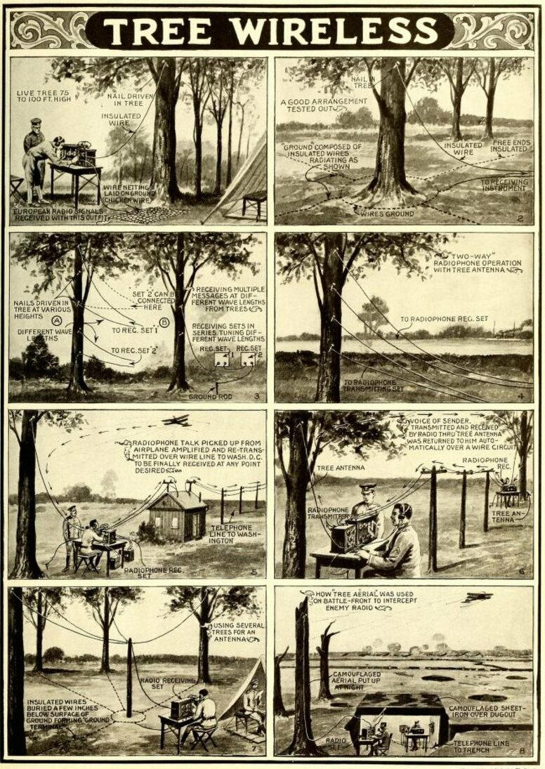 image the wwi plan to turn america's trees into telephones atlas obscura Basic Electrical Wiring Diagrams at couponss.co