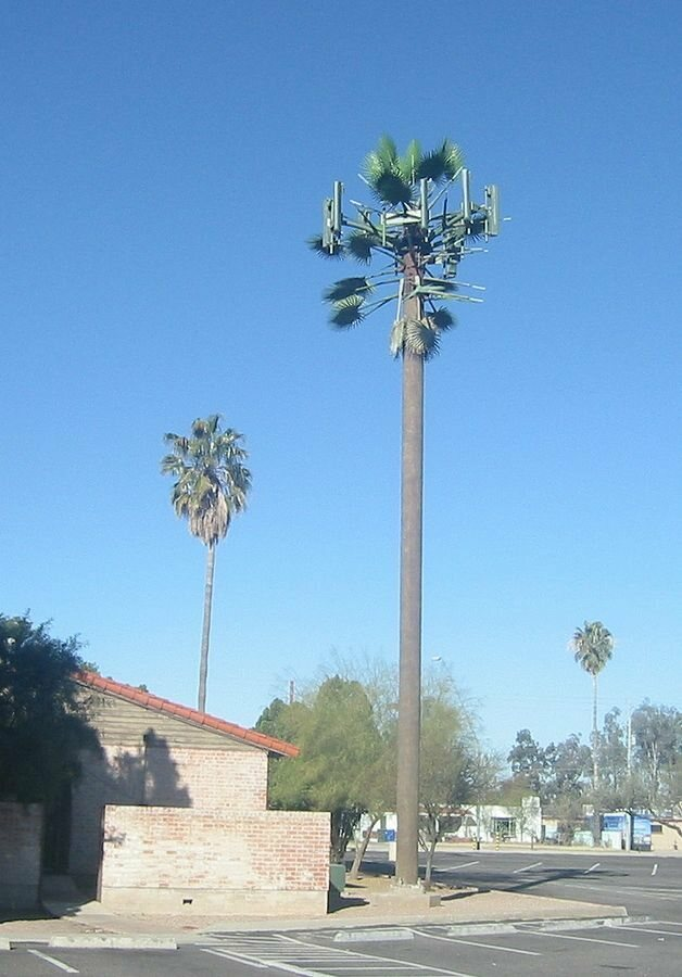 Take a Look at America's Least Convincing Cell Phone Tower