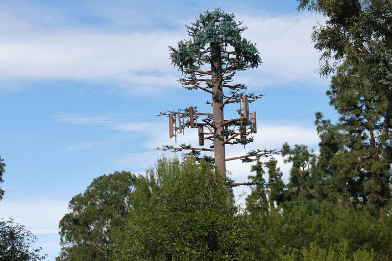 Take A Look At Americas Least Convincing Cell Phone Tower Trees