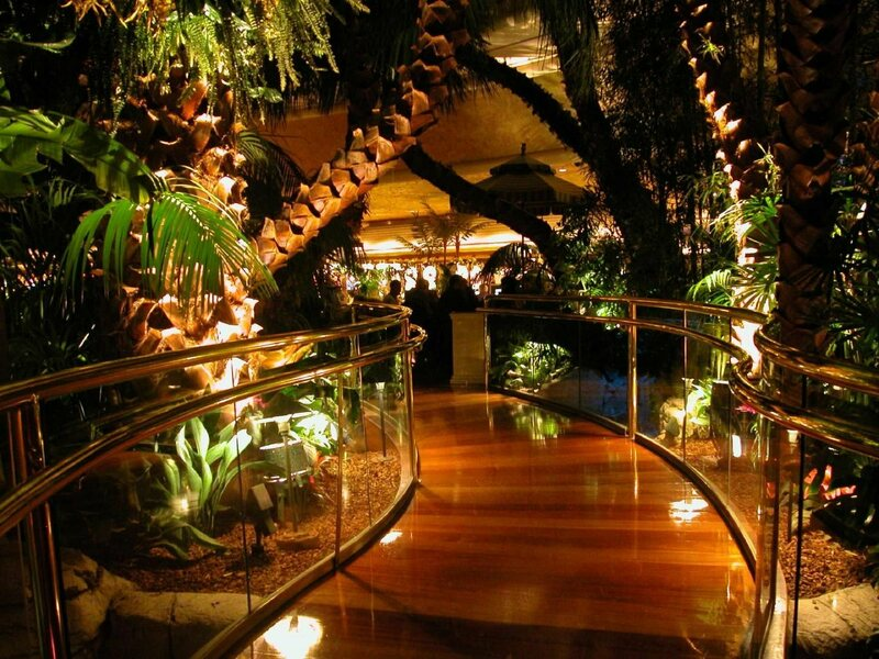 Restaurants Italian Near Me: The True Story Of The Rainforest Cafe Is Even Wilder Than