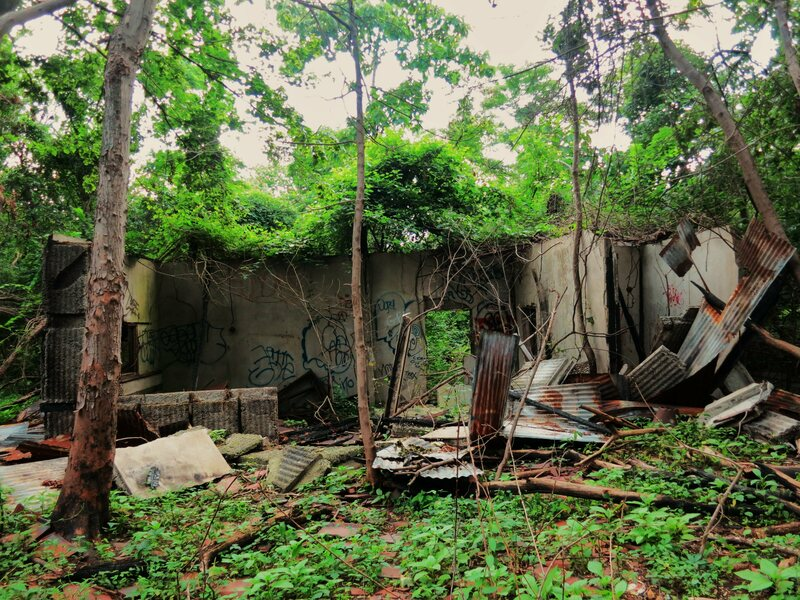 New York City Farm Colony Abandoned