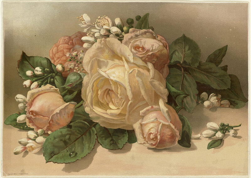 How Flower Obsessed Victorians Encoded