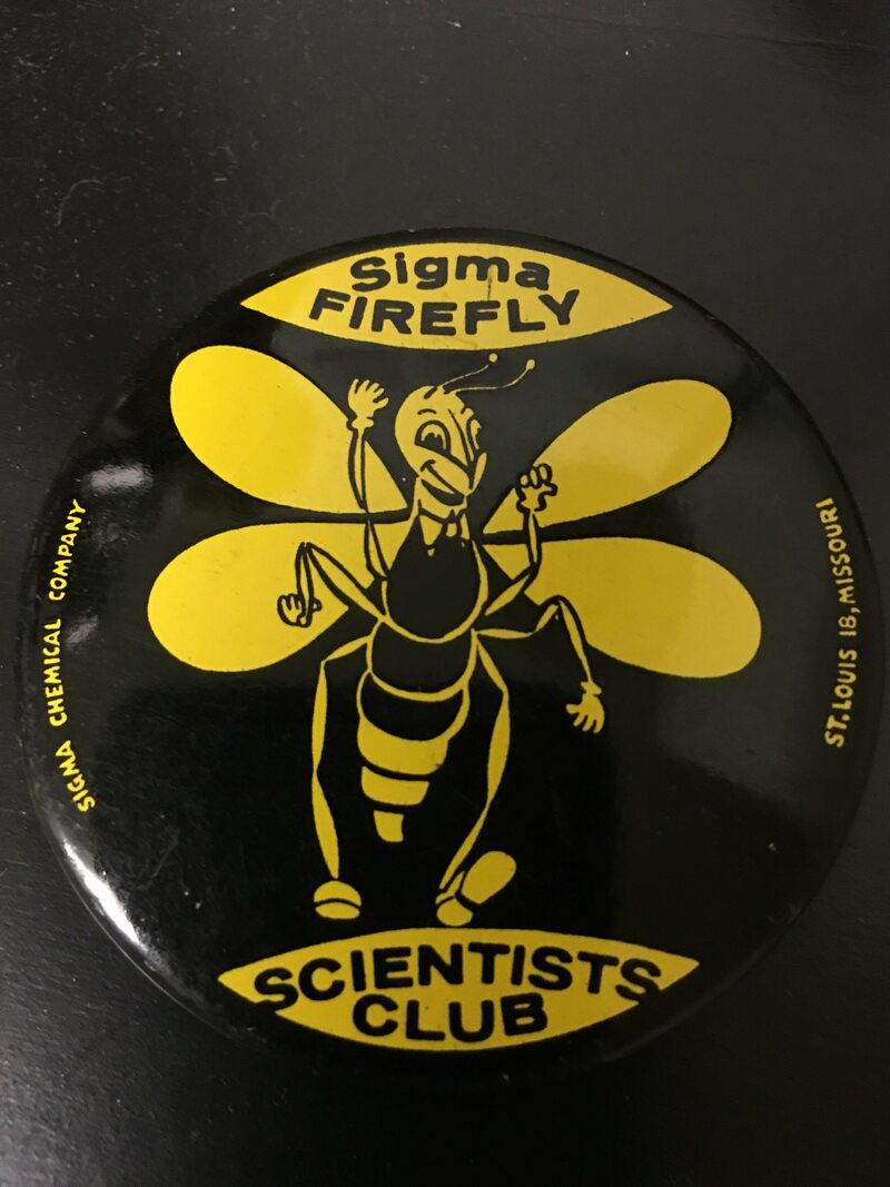 An official pin for proud members of the Sigma Firefly Scientists Club. (The tail glows in the dark.)